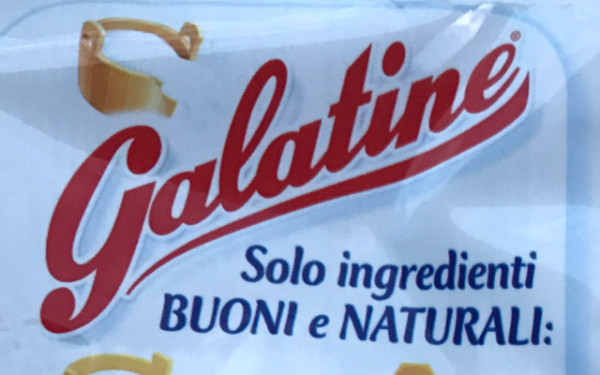 galatine-ant