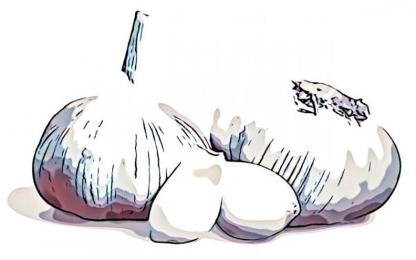 aroma-naturale-aglio