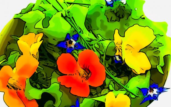 insalata-con-fiori