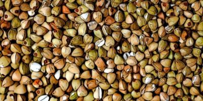 grano saraceno 400x200