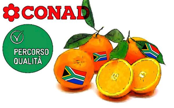 origine arance